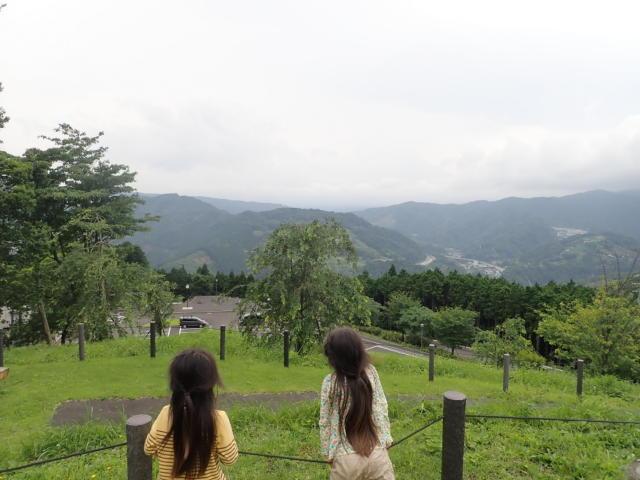 f:id:mochikichi-blog:20200705204220j:plain