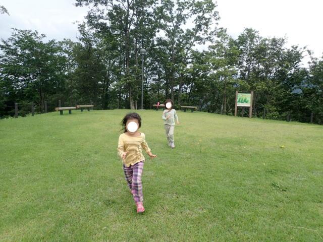 f:id:mochikichi-blog:20200705204231j:plain