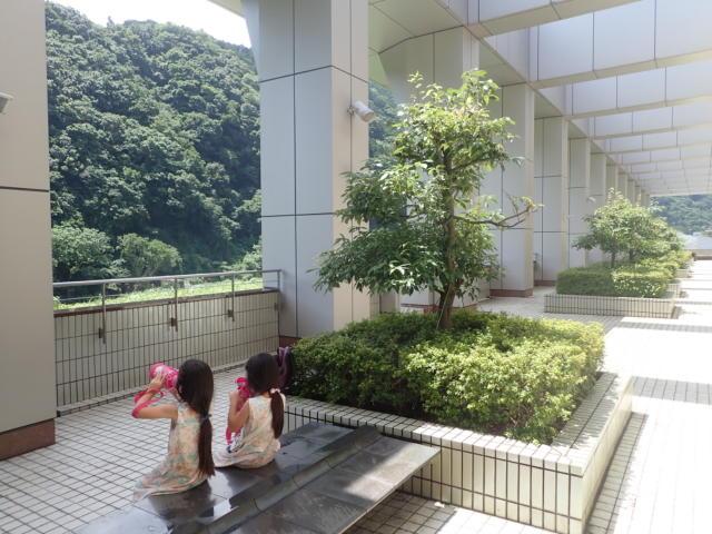 f:id:mochikichi-blog:20200719210940j:plain