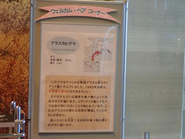 f:id:mochikichi-blog:20200719211029j:plain