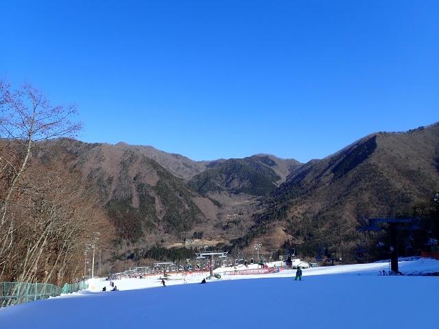 f:id:mochikichi-blog:20200725111204j:plain