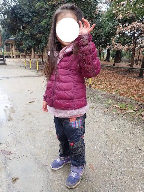 f:id:mochikichi-blog:20200725115442j:plain