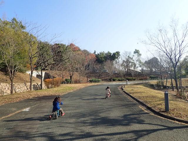 f:id:mochikichi-blog:20200725130553j:plain