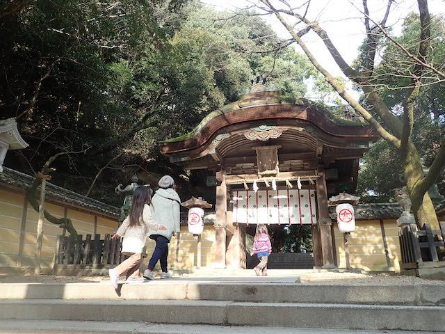 f:id:mochikichi-blog:20200725130825j:plain