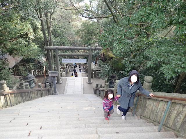 f:id:mochikichi-blog:20200725130829j:plain