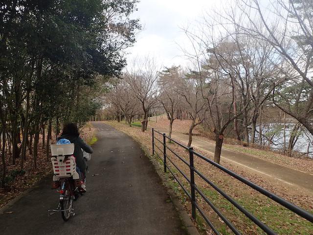 f:id:mochikichi-blog:20200725153712j:plain