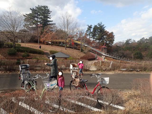 f:id:mochikichi-blog:20200725153715j:plain