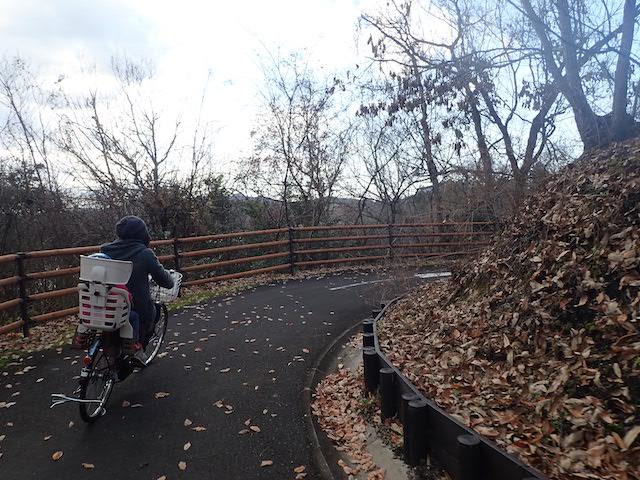 f:id:mochikichi-blog:20200725153803j:plain