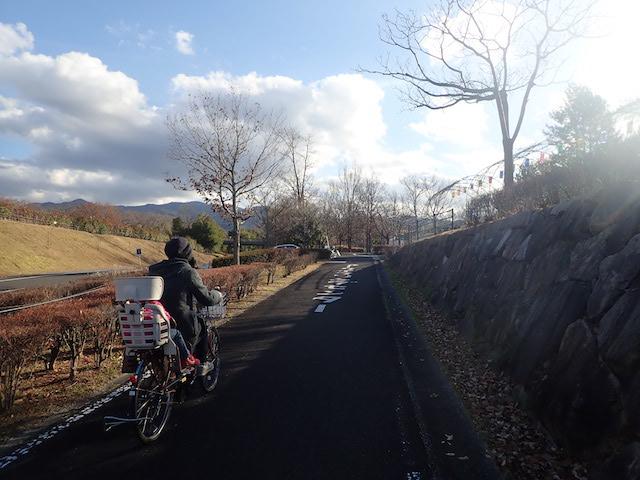 f:id:mochikichi-blog:20200725153811j:plain