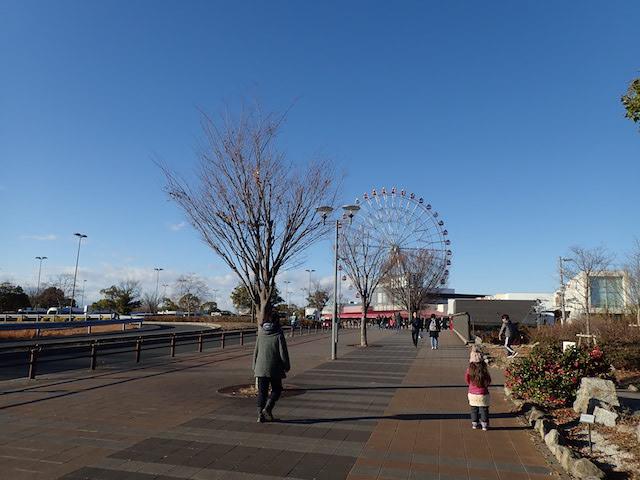 f:id:mochikichi-blog:20200725220229j:plain