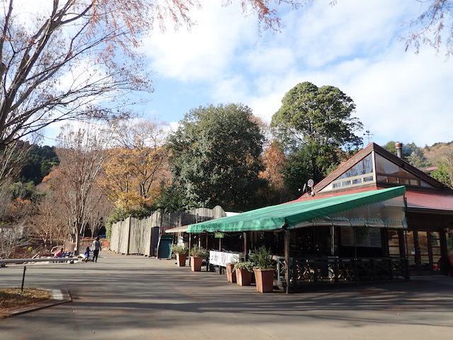 f:id:mochikichi-blog:20200726215537j:plain