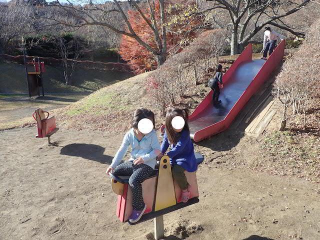 f:id:mochikichi-blog:20200726215650j:plain