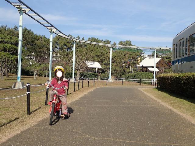 f:id:mochikichi-blog:20200726222600j:plain