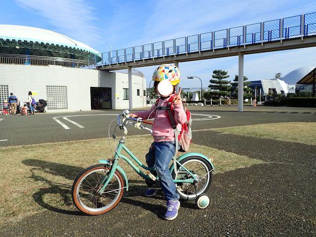 f:id:mochikichi-blog:20200726222722j:plain