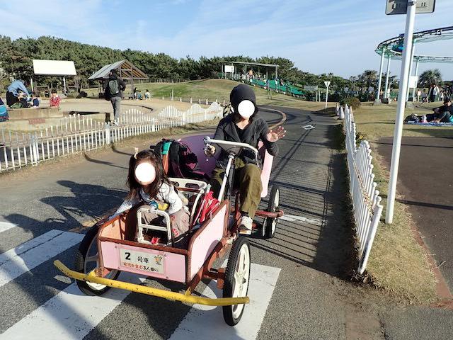 f:id:mochikichi-blog:20200726222729j:plain