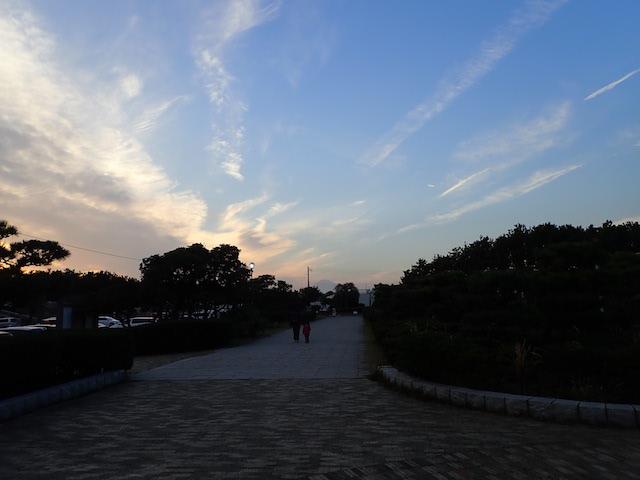 f:id:mochikichi-blog:20200726222740j:plain