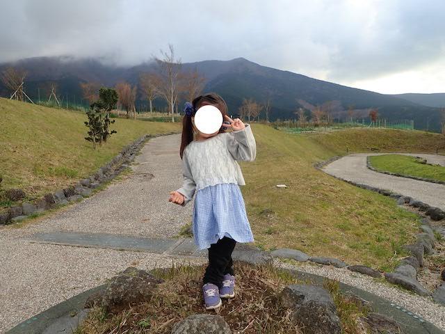 f:id:mochikichi-blog:20200727141509j:plain