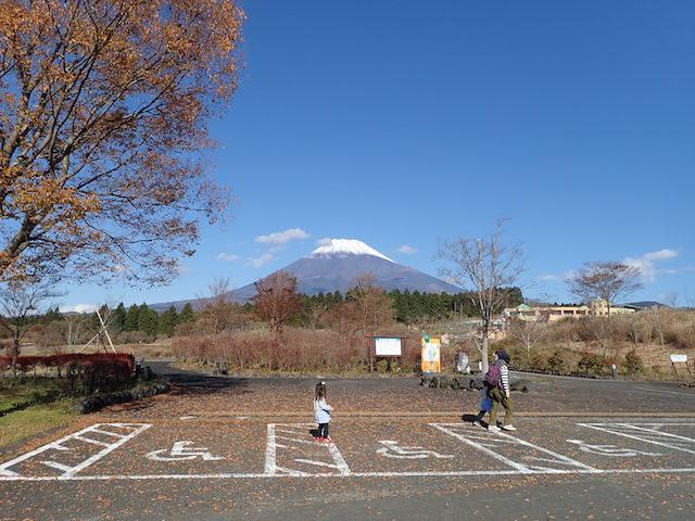 f:id:mochikichi-blog:20200727141521j:plain
