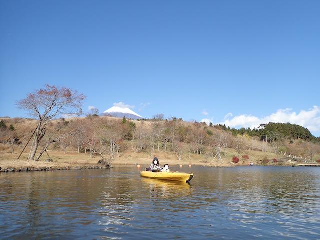 f:id:mochikichi-blog:20200727141538j:plain