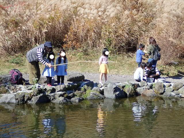 f:id:mochikichi-blog:20200727141552j:plain