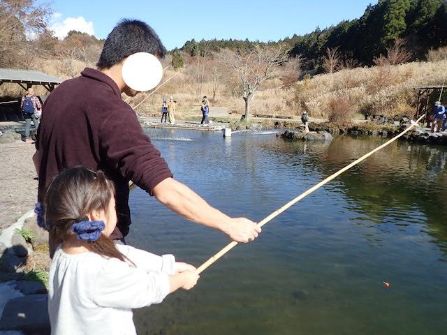 f:id:mochikichi-blog:20200727141556j:plain