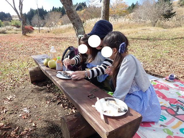 f:id:mochikichi-blog:20200727141617j:plain