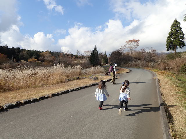 f:id:mochikichi-blog:20200727141637j:plain