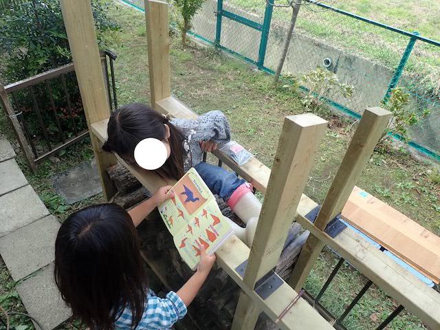 f:id:mochikichi-blog:20200727144831j:plain