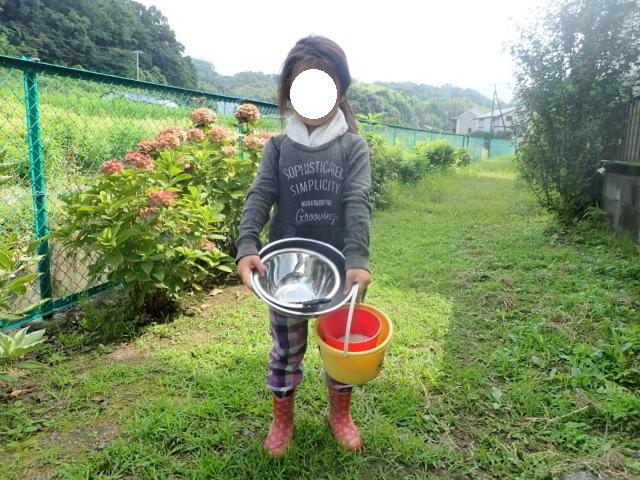 f:id:mochikichi-blog:20200805220117j:plain