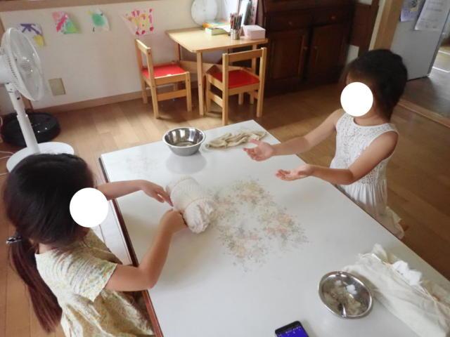 f:id:mochikichi-blog:20200806164313j:plain