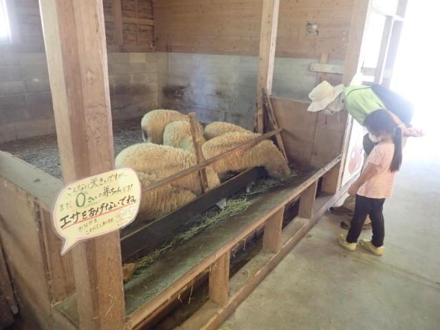 f:id:mochikichi-blog:20200831231605j:plain
