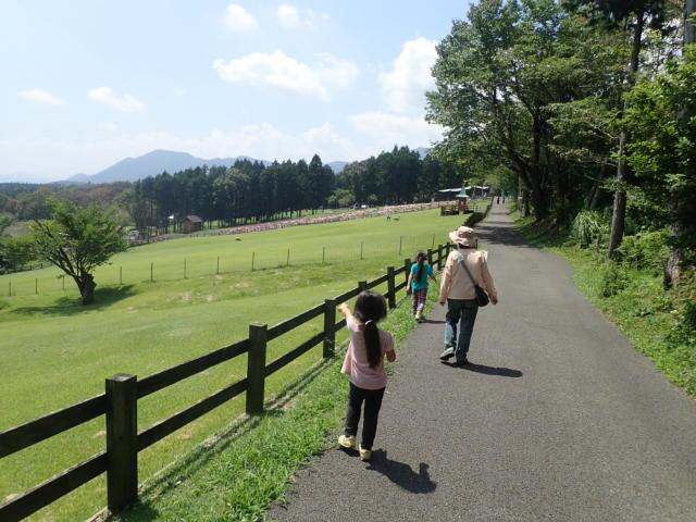 f:id:mochikichi-blog:20200831231625j:plain