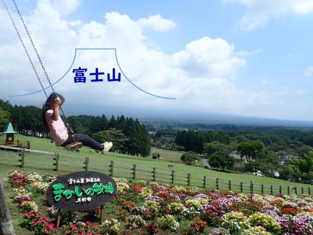 f:id:mochikichi-blog:20200831231648j:plain