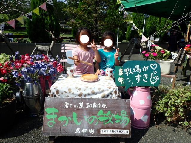 f:id:mochikichi-blog:20200831231734j:plain