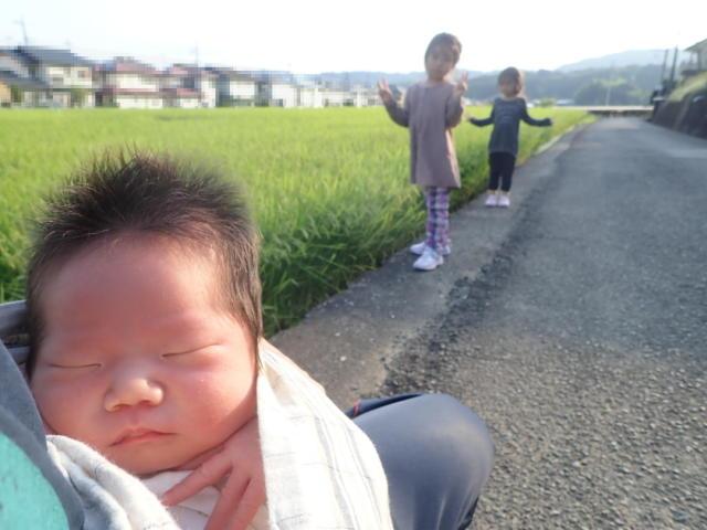f:id:mochikichi-blog:20200901105343j:plain