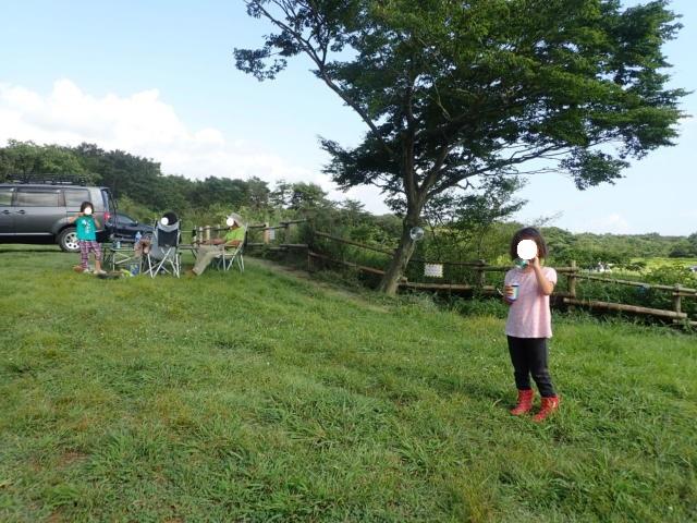 f:id:mochikichi-blog:20200901174644j:plain