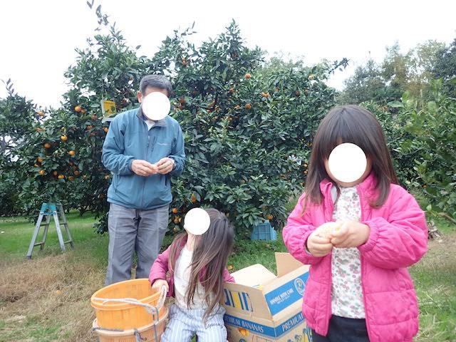 f:id:mochikichi-blog:20200903102021j:plain
