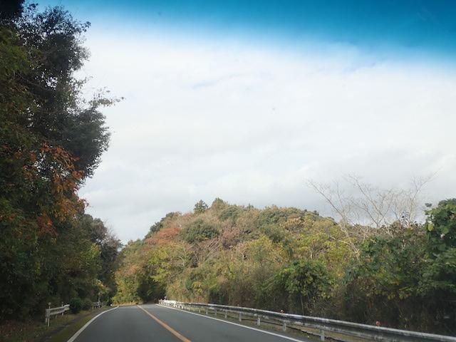 f:id:mochikichi-blog:20200903105051j:plain