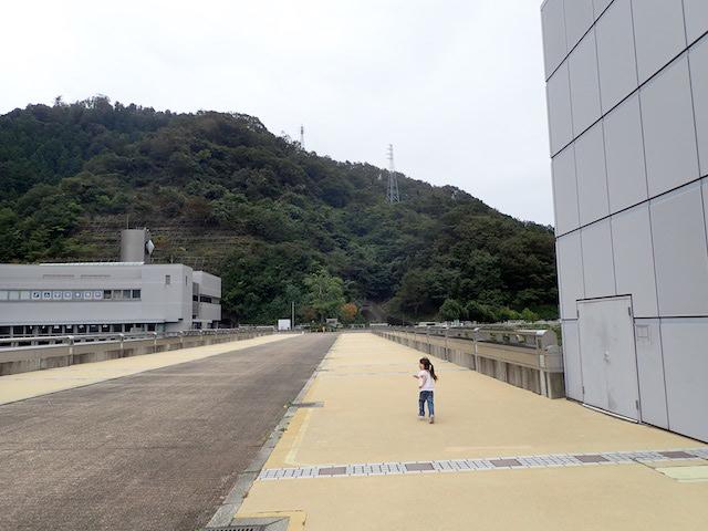 f:id:mochikichi-blog:20200903113705j:plain