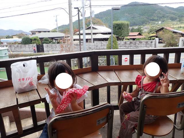 f:id:mochikichi-blog:20200903113800j:plain