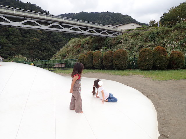 f:id:mochikichi-blog:20200903113827j:plain