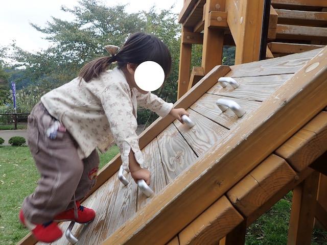 f:id:mochikichi-blog:20200903113912j:plain