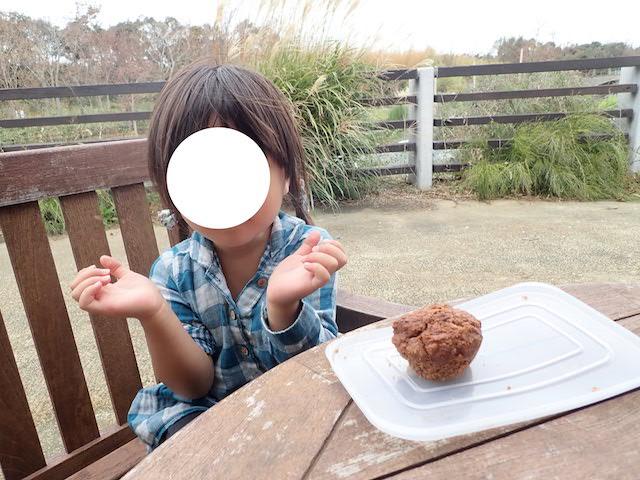 f:id:mochikichi-blog:20200903115712j:plain