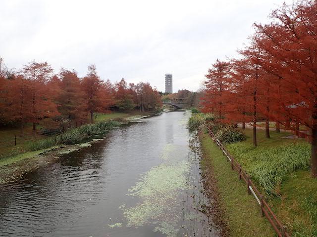 f:id:mochikichi-blog:20200903115728j:plain