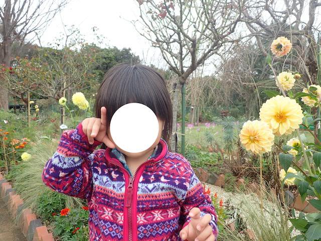 f:id:mochikichi-blog:20200903115750j:plain