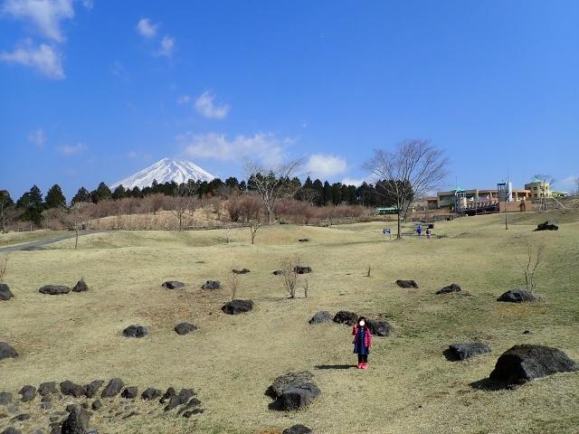f:id:mochikichi-blog:20200903160646j:plain