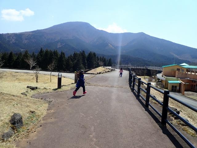 f:id:mochikichi-blog:20200903160747j:plain