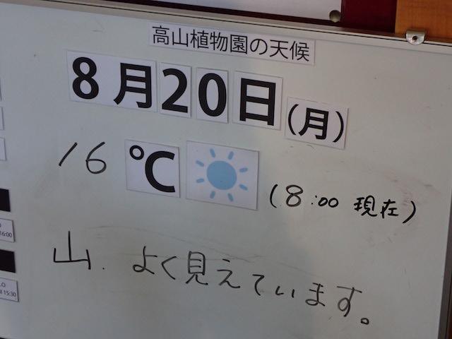 f:id:mochikichi-blog:20200904131415j:plain