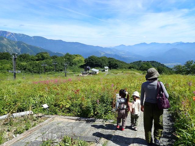 f:id:mochikichi-blog:20200904131517j:plain
