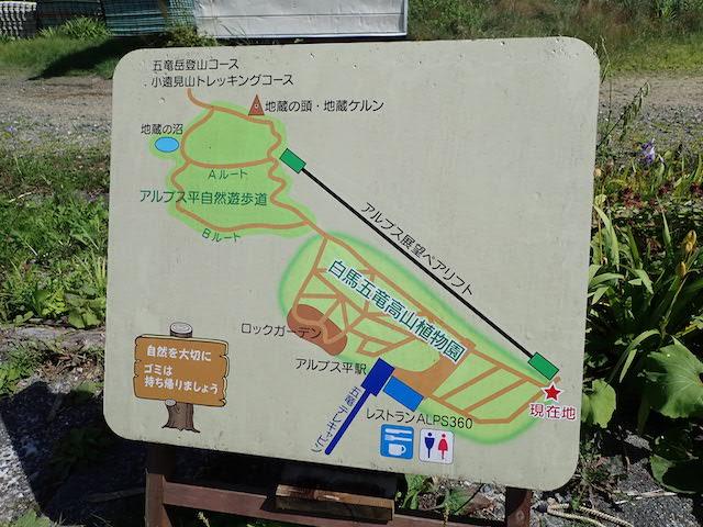 f:id:mochikichi-blog:20200904131523j:plain